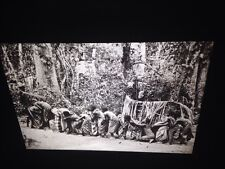 "Dan Ivory Coast ""Circumcision-Greeting The Zo"" African Tribal Art 35mm Slide"