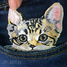 1x Cute Cat Embroidered Iron On/Sew On Patch Badges Lace Fabric Applique