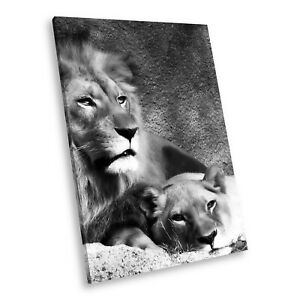A039 Black White Animal Portrait Canvas Picture Print Large Wall Art Lion Funky