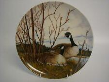 BRADEX DOMINION CHINA CANADA GEESE NESTING FROM WINGS UPON THE WILD PLATE