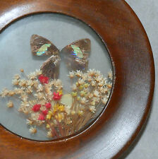 """Wall Art VINTAGE Framed Small Wood Flowers BRAZIL Butterfly Round 5"""""""