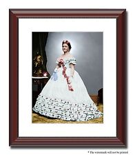 """Mary Todd Lincoln woman wife inaugural 11x14"""" Framed Photo Color Civil War 01023"""