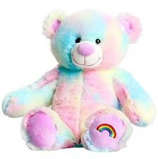 "MAGICAL RAINBOW BEAR TEDDY 10"" (25cm) NO SEW STUFF BUILD A BEAR MAKING KIT"