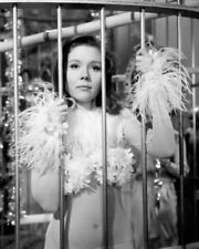 The Avengers Diana Rigg skimpy costume in giant bird cage 8x10 Photo
