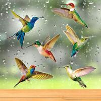 6 Pcs Hummingbird Window Clings Window Decor Decals for Home Gift Decor