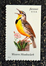2014USA #4882 Forever Songbirds - Western Meadowlark - Single From Booklet Mint