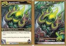 Magtheridon(déchainé) - Raid 2/43 - Rare NM WoW Magtheridon's Lair Treasure-FR