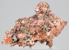 Nativo Cobre Natural Racimo de Cristal Mineral Muestra Con / Matriz Michigan