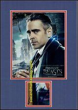 Colin Farrell Percival Graves Harry Potter Fantastic Beasts Autograph UACC RD 96