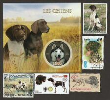 German Shorthaired Pointer * Int'l Dog Stamp Art Collection *Great Gift Idea*
