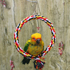 New listing Colored Parrot Chewing Chew Toy Pet Bird Cage Swing Standing Rope Decor Jian