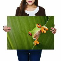 A2 - Cool Green Frog Nature Frogs Poster 59.4X42cm280gsm #3682