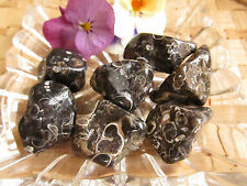 6-Agate turitelle-Lithothérapie-Soin par les cristaux