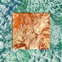 FLARES - ALLEGORHYTHMS   VINYL LP NEU