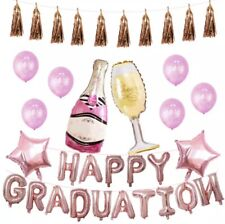 Pink/Gold Graduation Party Supplies