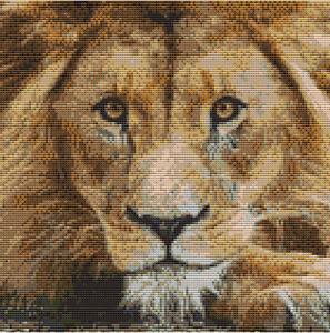 CROSS STITCH KIT - LION FACE  25CM  X 25 CM