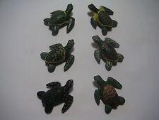 Magnet - Turtles (set of 6) - # 171