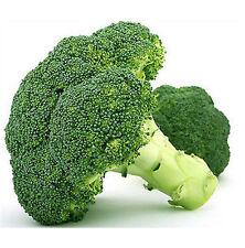 FD1880 Broccoli Seed Cauliflower Seed Green Vegetable Seeds ~1 Pack 50 Seeds ✿