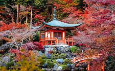 STUNNING JAPANESE GARDEN LANDSCAPE #273 FRAMED CANVAS PICTURE A1 SIZE WALL ART