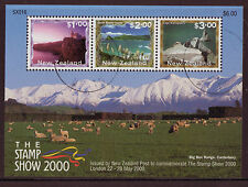 La Nouvelle Zélande 2000 cachet show miniature sheet fine utilisé
