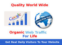 Unlimited Quality Google targeted website web traffic for the life