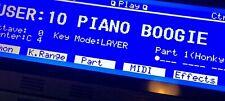 Roland XP-60 Custom (Negative) LED Graphic Display !