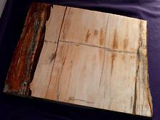 piastra legno pietrificato MADAGASCAR 4478g 363x283x19mm CAMINETTO DECORAZIONE