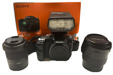 Sony DSLR-α100 + Minolta 28-105mm Lens + Minolta Flash