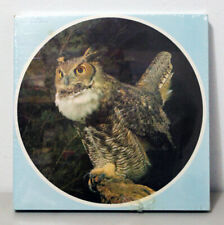 Audubon Great Horned Owl 1971 500+ Pc Jigsaw Puzzle Eaton Treasure Collection!