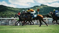 The Race Code Breaker Horse Racing System