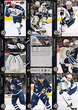 2015-16 UD Upper Deck Winnipeg Jets Regular + Canvas Team Set (19)