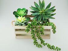 Artificial Plant Picks -Pachyphytum Cactus Dudleya Nertra Berry Vine-4 pcs