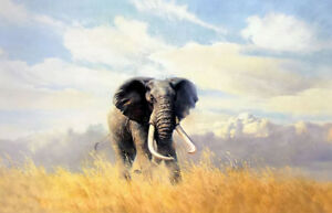 Dream-art hand painted Oil painting wild animals elephant in landscape on canvas