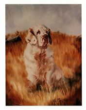 New Clumber Spaniel in Field Notecards 12 Note Cards 12 Envelopes Ruth Maystead