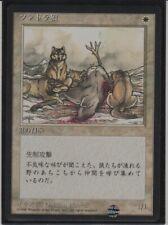 Mtg Tundra Wolves 4th FBB Japanese Mint Vintage Legacy Magic