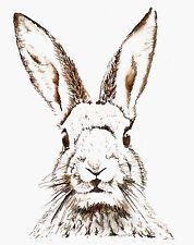 Vintage print poster Rabbit Hare large art drawing for glass frame 90cm