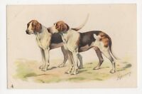 Espinassy, Sporting Dogs, Fox Hounds, Tuck 6743 Embossed Chromo sPostcard, B118