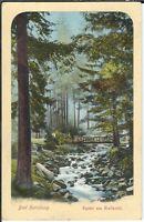 Ansichtskarte Bad Harzburg - Partie am Radautal - Wasserfall - gelaufen 1910