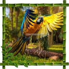 Sticker autocollant Cadre bambou Perroquet7138