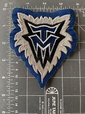 Minnesota Timberwolves Logo Patch NBA National Basketball Association MN League