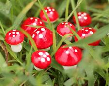 20pcs Red ZA Mushroom Garden Ornament Miniature Plant Pots CO Fairy Dollhouse