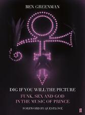 Dig If You Will The Picture: Funk, Sex and God in the Music of Prince RARE PROMO