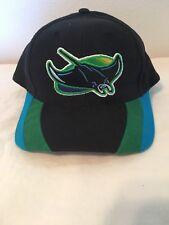 Vtg Tampa Bay Devil Rays Snapback  Baseball Hat Cap Colored Bill