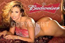 Fridge Magnet Sexy Budweiser sexy playmate hooters pin-up girl art