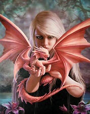 "Dragon Kin Canvas Wall Plaque by Anne Stokes 10"" x 7"""