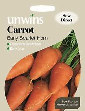 Unwins Pictorial Packet - Vegetable - Carrot Early Scarlet Horn - 1500 Seeds