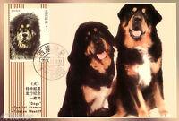 China 2006 - Dog, Tibetan Mastiff , Maximum Card
