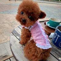 XXXS Puppy Cat Lace Dress Shirt Small Pet Dog Clothes Yorkie Maltese Apparel XXS