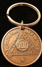Alcoholics Anonymous Aa 49 Year Bronze Keychain Medallion Token Coin Chip Ring