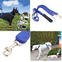 Guinzaglio addestramento cane pettorina nylon Blu passeggio corsa jogging cani